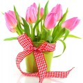 С праздником Весны, любимые женщины!